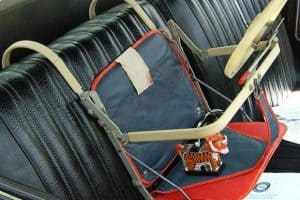 history of car seat laws and safety