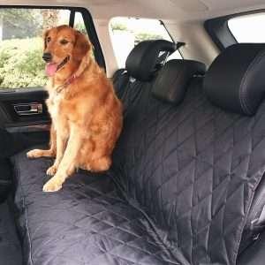 BarksBar Luxury Pet Car Seat